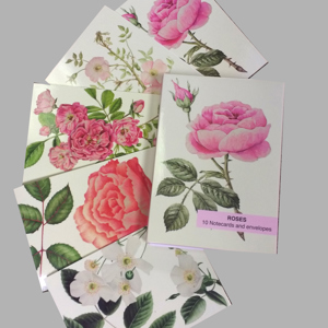 Roses Pack of 10 notecards