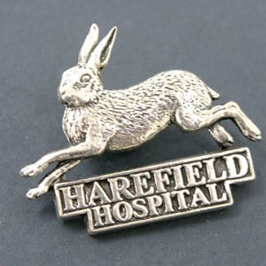 Harefield pewter/brooch pin